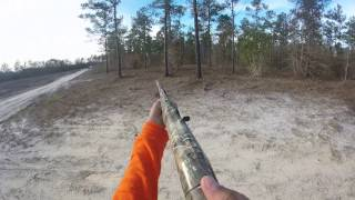 Deer hunting with hounds kill shot