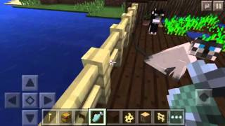 How To Tame A Cat And Dog In Minecraft PE (Tutorial)
