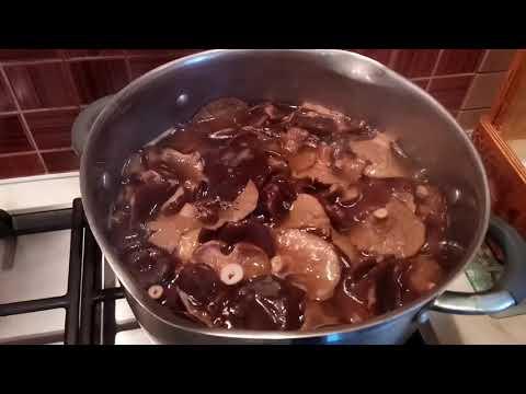 Как солить грибы горькушки в домашних условиях