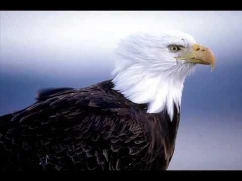 Laura Pausini che cos'è la libertà