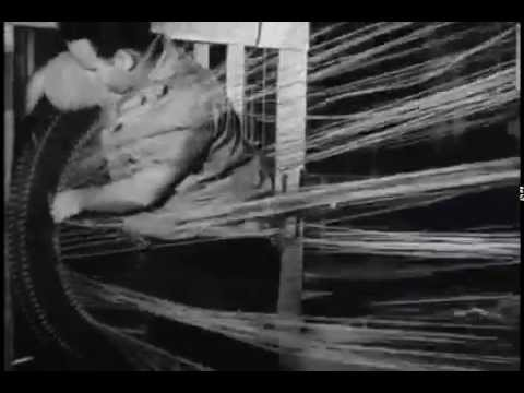 Hemp for Victory (1942) - United States Department of Agriculture