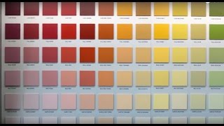 SIKKENS - COLOUR WALL