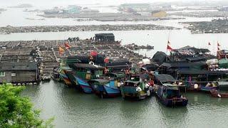 【福建沿海】樸實漁村