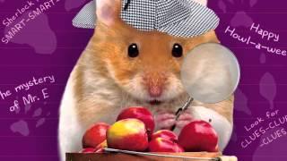 Humphrey - Everyone