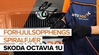 Montering Opphengingsfjær SKODA OCTAVIA (1U2): gratis video
