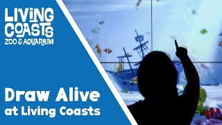 Draw Alive at Living Coasts