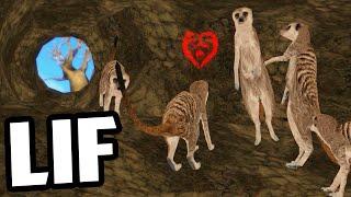 LIF - MEERKAT DEN vs LIONS (LIF Funny Moments Gameplay)