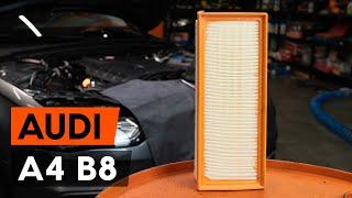 Variklio oro filtras keitimas AUDI A4 (8K2, B8) - vaizdo pamokomis