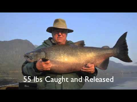 Chile Salmon Fishing Excursion
