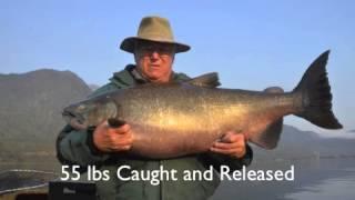 Chile Salmon   Mobile