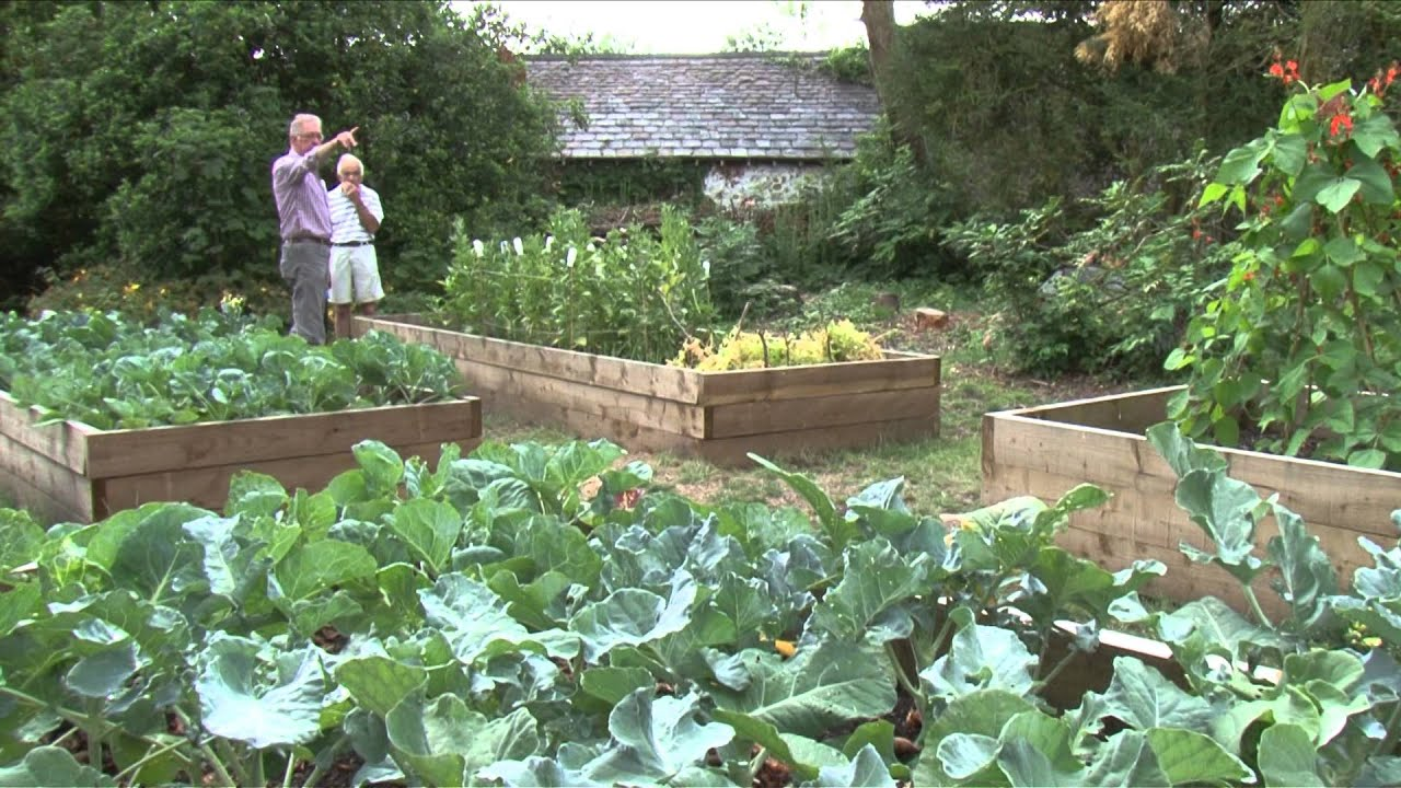 The Victorian Kitchen Garden Community Foodie Victorian Kitchen Garden Llanyrafon Manor