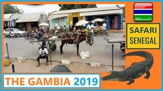 THE GAMBIA 2019 Safari Senegal Senegambia