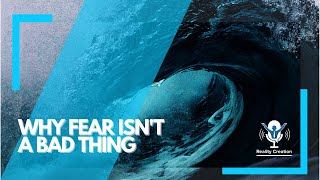 Fear Isn't A Bad Thing || RCTV