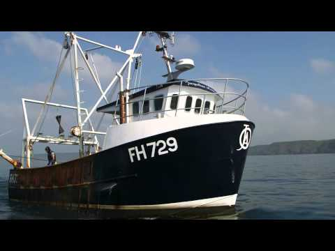 Scallop Fishing - Safeguarding Seafood By Managing Our Seas