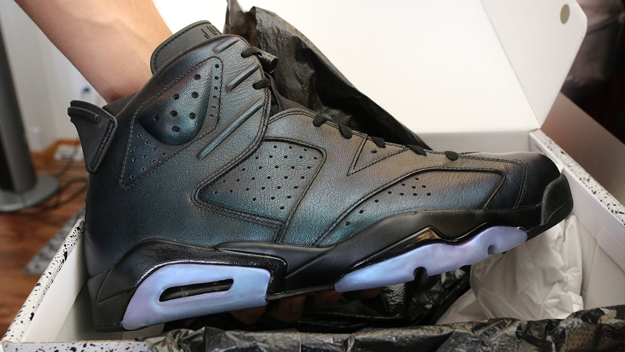 official photos f7641 b07e0 $225 FOR THESE?? AIR JORDAN 6 ALL STAR CHAMELEON PICKUP VLOG!!