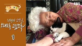 고양이를 부탁해 - 노부부와 고양이,오래도록 고맙도록_#001