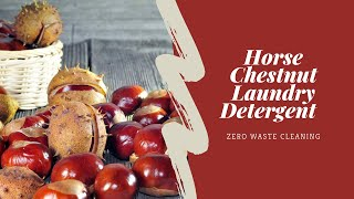 Horse Chestnut Laundry Detergent DIY 🌰