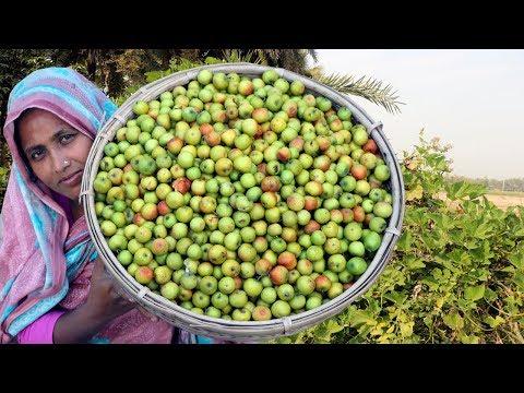 Kuler Achar Recipe - Homemade Plum Pickle Cooking - Bengali Tok Jhal Misti Boroi Achar Recipe