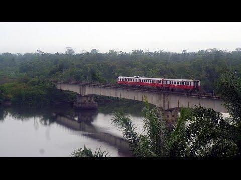 Kamerun in einem Zug. Eine Entdeckungsfahrt auf 1.000 mm-Spur