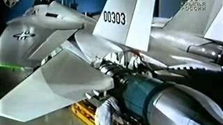 F-14. Красные звезды. Знаменитые самолеты