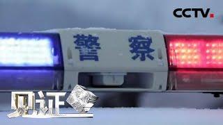 《见证》 20190524 绿剑行动Ⅱ(一)冰雪下的紫貂皮| CCTV社会与法