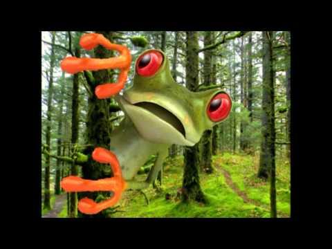 Happy Birthday To You Tango The Tree Frog