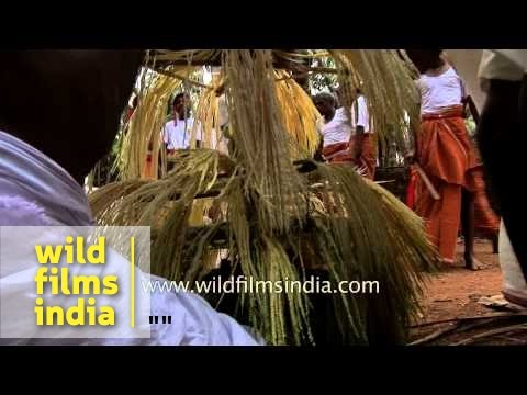 Devotees decorating attire of Theyyam, Kerala