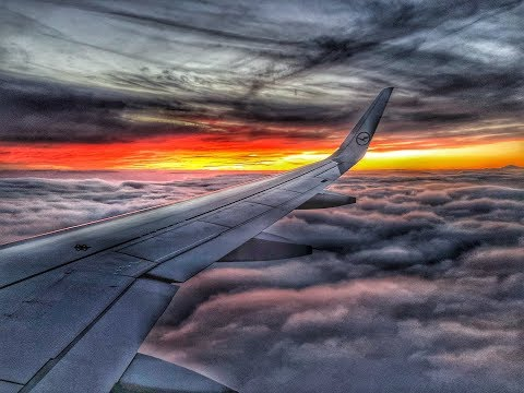Lufthansa A320neo | FRA-LHR | Economy