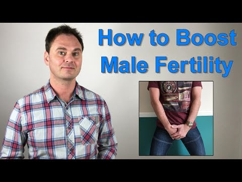 Increase Male Fertility Naturally and Increase the Chances of Getting Pregnant