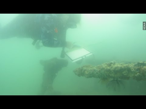 A Rare Look At This Sunken Seaplane Downed In Pearl Harbor - Newsy