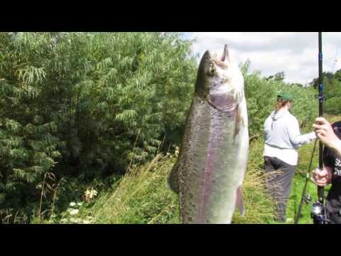 Fishing At Bessy Beck Cumbria