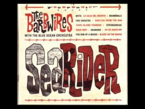 The Barbwires With The Blue Ocean Orchestra – Searider [Full Album]