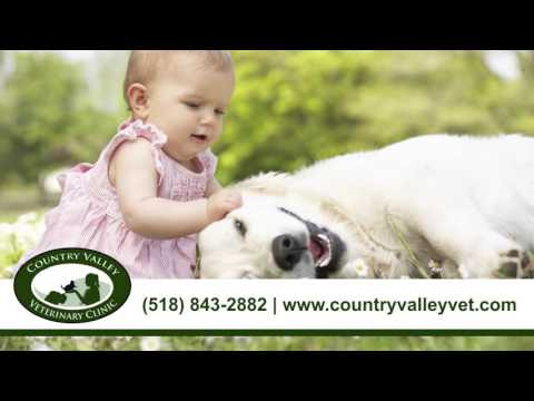 Country Valley Veterinary Clinic | Veterinary Services in Amsterdam