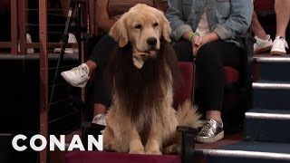 Conan Replaces The Bearded Men In His Studio With Dogs - CONAN on TBS