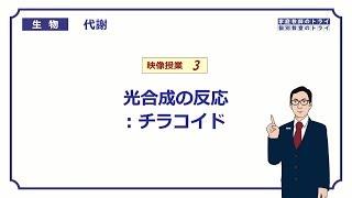 【高校生物】 代謝3 光合成の反応:チラコイド(21分)