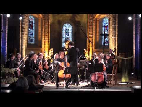 Vivaldi double concerto - Henri Demarquette / Claire-Lise Démettre - OCNE / Nicolas Krauze