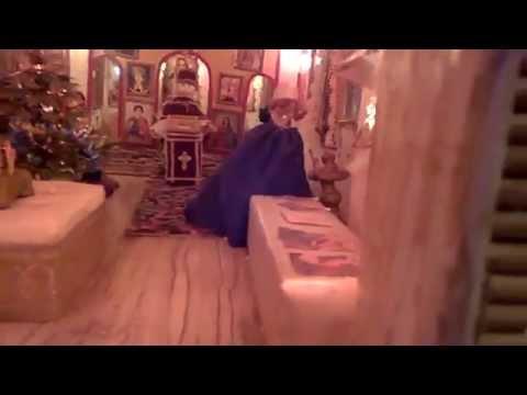 Сбор урожая в Крыму: Знаменитый ялтинский лук: Как отличить ялтинский лук от подделки