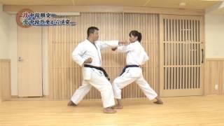 Shotokan Кarate Video Program 3-1 Kyu with Instructors Takahashi Yu...