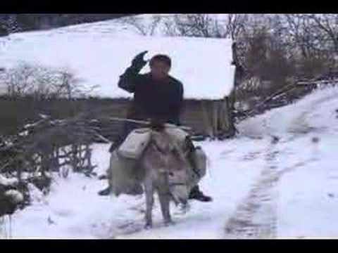Kore gazisi Akif Sen, Sinop, Dikmen