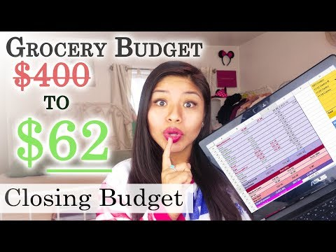 My Grocery budget went from $400 to $62 a month | Dec Closing Budget