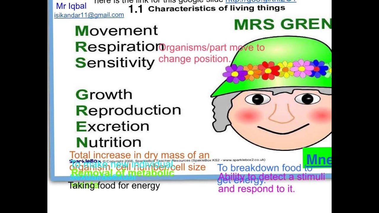 Igcse Biology Chap 1 1 Characteristics Of Living Organisms