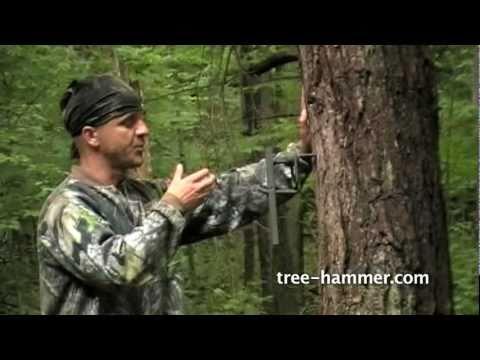 The Tree Hammer Pt I Youtube