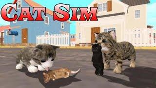 Симулятор маленького котенка на андроид Cat Sim Online Play with Cats