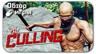 Видео обзор игры The Culling на ПК (gameplay, 2016)