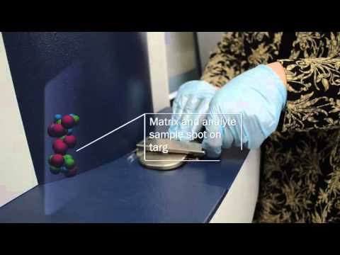 Theory of MALDI-TOF Mass Spectrometry