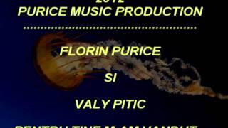 FLORIN PURICE SI VALY PITIC-PENTRU TINE M-AM VANDUT
