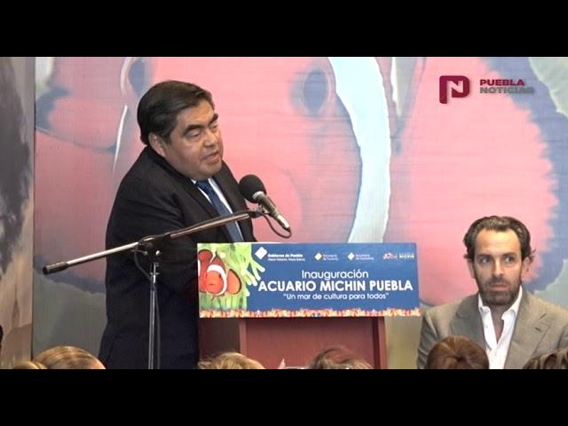 #PueblaNoticias  Se inauguró el Acuario Michin