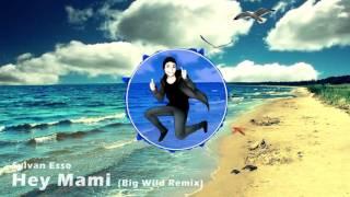 Sylvan Esso Hey Mami Big Wild Remix Charmx Intro 2015