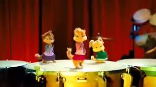Cats Funny Dance (Cats Song)