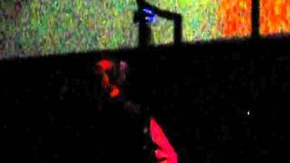 Дельфин - Sunset l Dolphin - Sunset MegaChel club